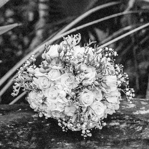02-flowers-bw